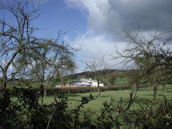 Cradley Primary School   Howl